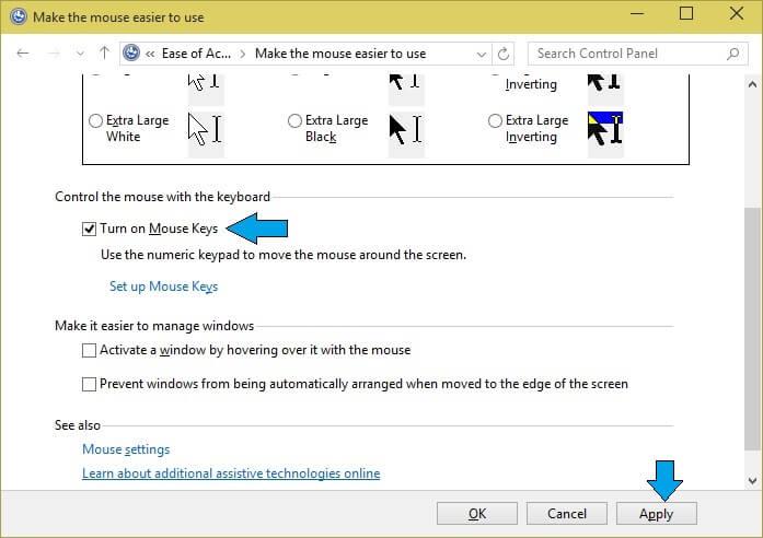 Turn On Mouse Key Option